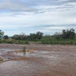 Continúan lluvias en el estado: en Chihuahua y Ciudad Juárez se prevé sean dispersas